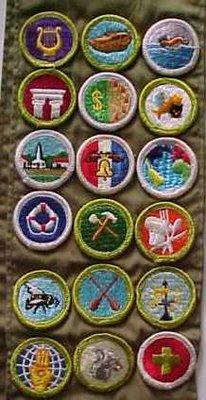 Merit Badge University