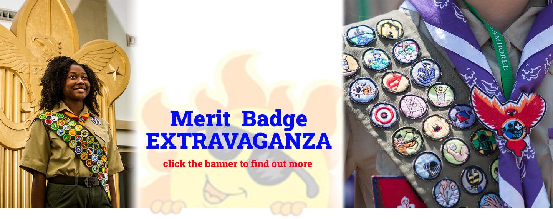 Merit Badge Extravaganzq